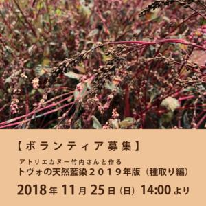 【ボランティア募集】アトリエカヌー竹内さんと作るトヴォの天然藍染2019年版(種取り編)
