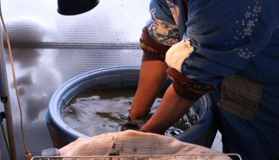 【ご報告】藍染勉強会②〜アトリエカヌー竹内さんと作るトヴォの天然藍染2019年版