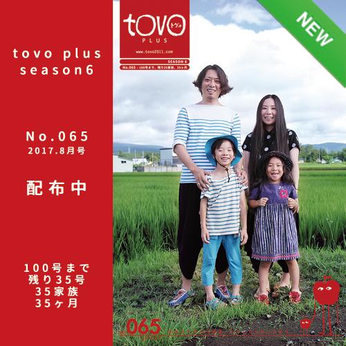 tile tovoplus 065