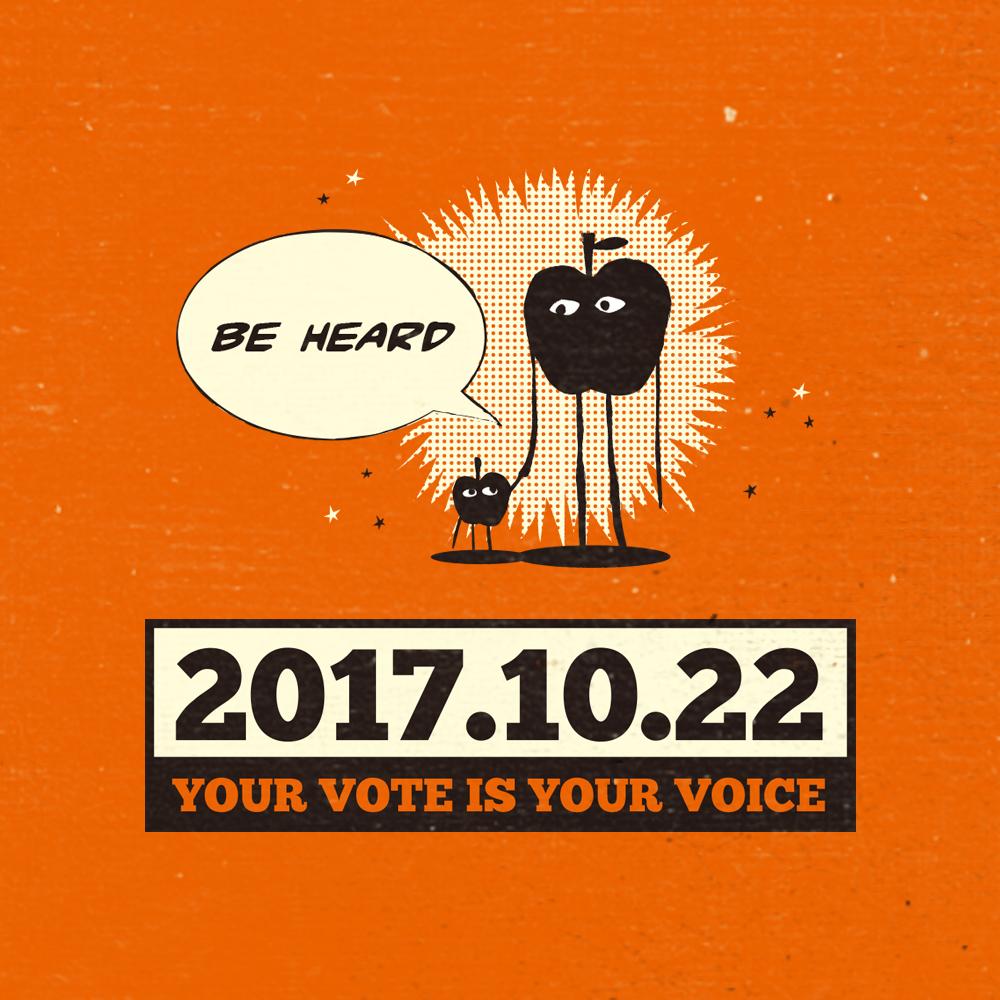 vote2017 instagram 4